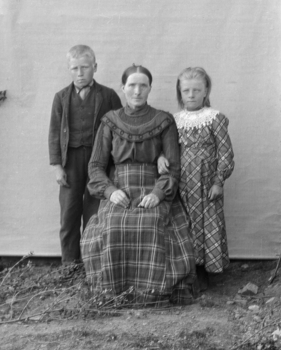 Kvinne med to barn, lerretbakgrunn