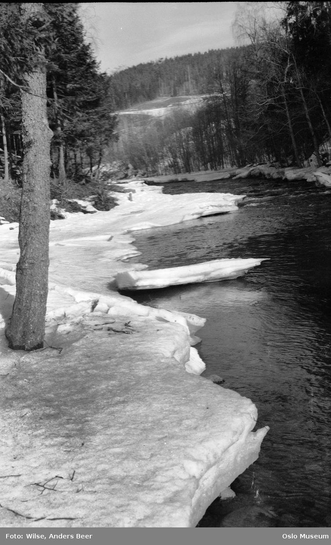 elv, snø, is, skog