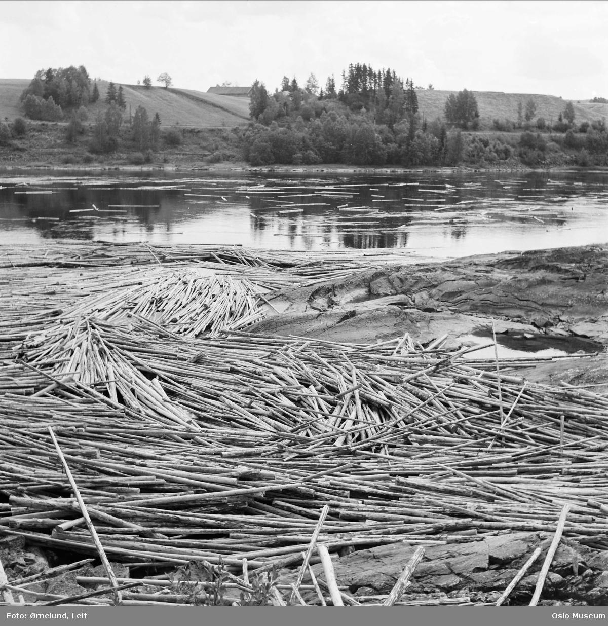 elv, tømmerfløting, skog, kulturlandskap