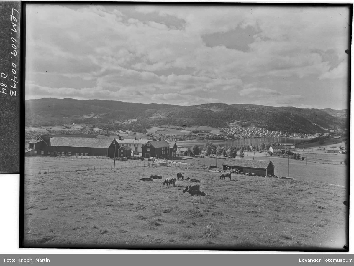 Utsikt fra et gårdstun på Inntrøndelag  I
