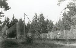 """Enligt Bengt Lundins noteringar: """"Strandön. Tennis och bordt"""
