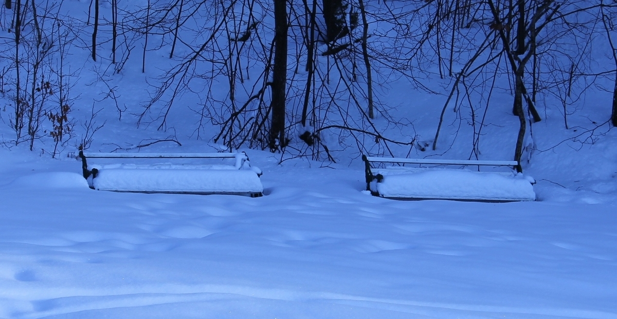 Snø i parken den 29.01.2013, Berg-Kragerø Museum.