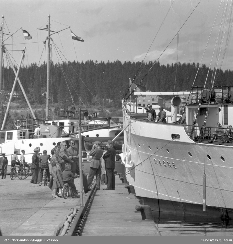 Båtrusch i Sundsvalls ham en midsommarhelg på 1950-talet. Vasaholm, Minnesota, Ragne, Ahoy Kampen, Amazonas.