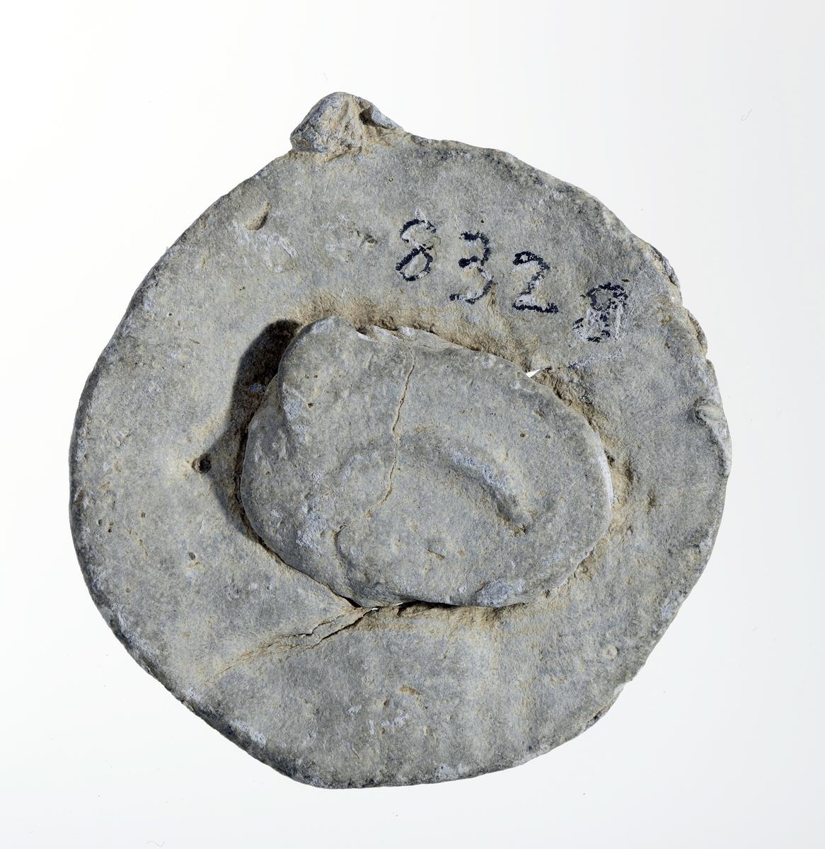 Advers: Stor tohodet ørn med utslåtte vinger og krone over hodene.  Revers: Deler av gotisk bokstav, trolig minuskel n med synlig perle.