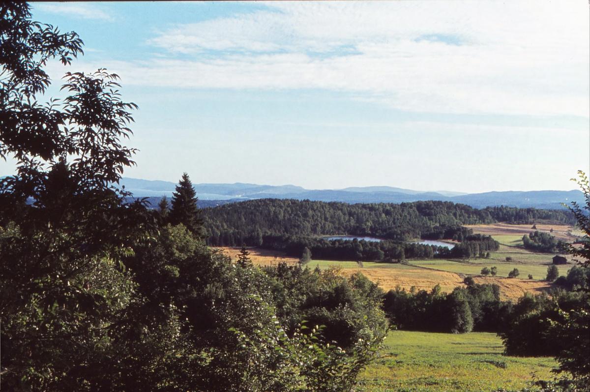 Utsikt fra Stein Gård i Bærum mot Dæhlivann.