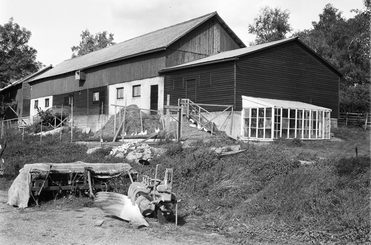 Ladugård och svinhus, Tibble 7:1, Rasbokils socken, Uppland 1982