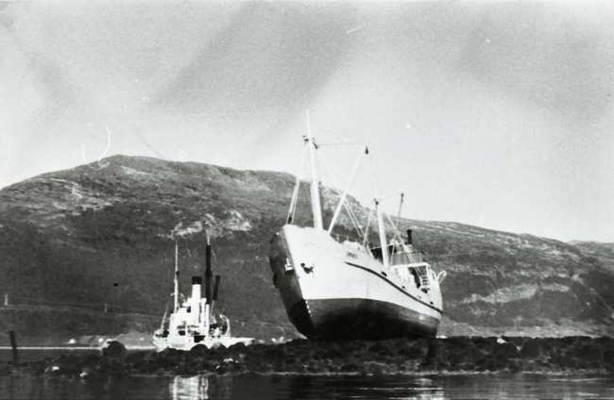 ORNES på grunn i Tjeldsund august 1958.