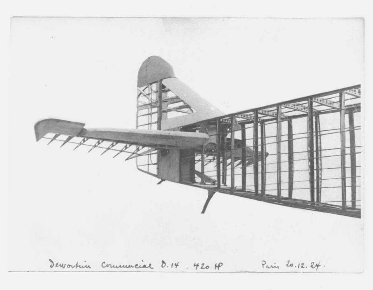 Halepartiet på ett fly, Dewoitine D14