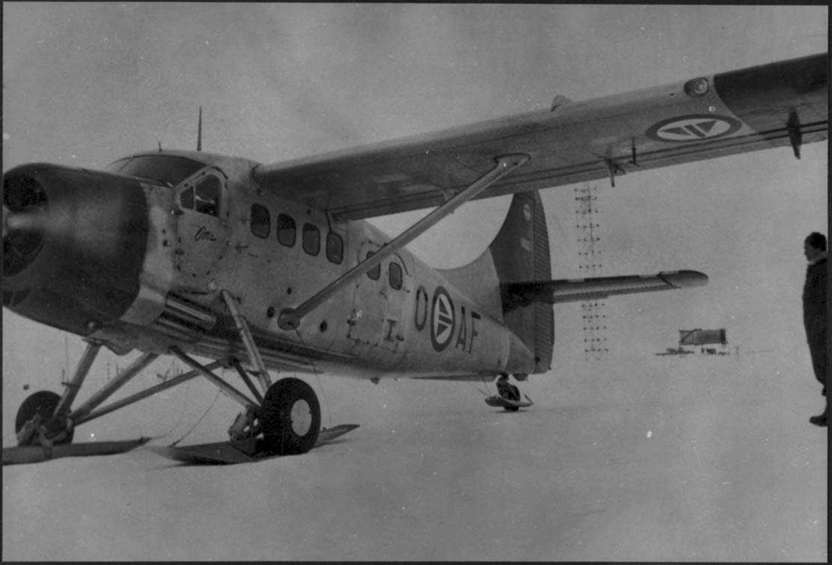 Ett fly på isen, Otter OAG.