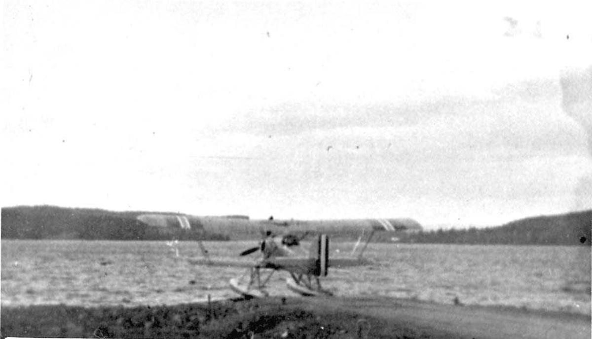 Ett fly som ligger på vannet, MF-11.