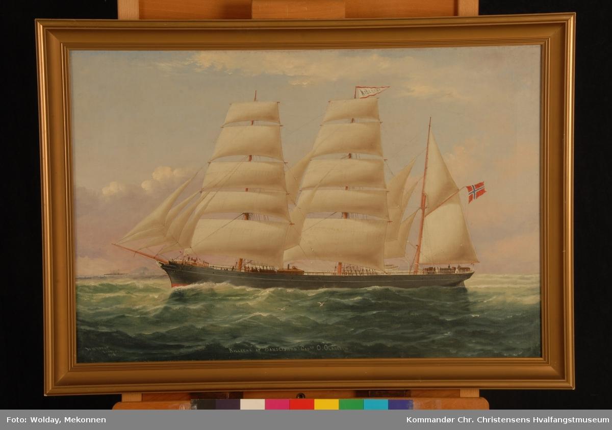 Bark Killeena af Sandefjord, kapt. O. Olausen