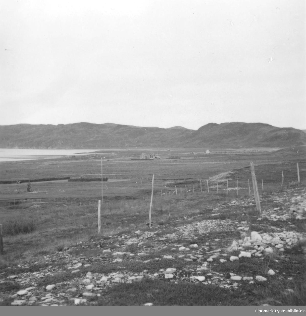 Høstbilde fra Selkopp i Kokelv. Huset til Uldrik Larsen ses midt på bildet. På sletten henger det høy på hesjer. Flere plasser er det gjerder