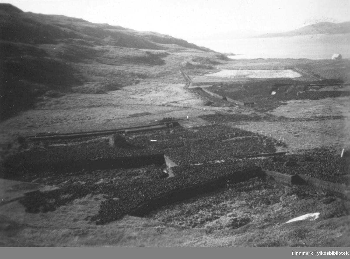 Torvstikkingsarbeid i Kokelv. På bildet er det utsikt over torvmyrene. Sjøen ses bak til høyre i bildet