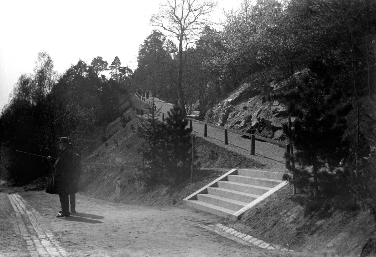 Gångvägen upp till Jönköpings Stadspark.