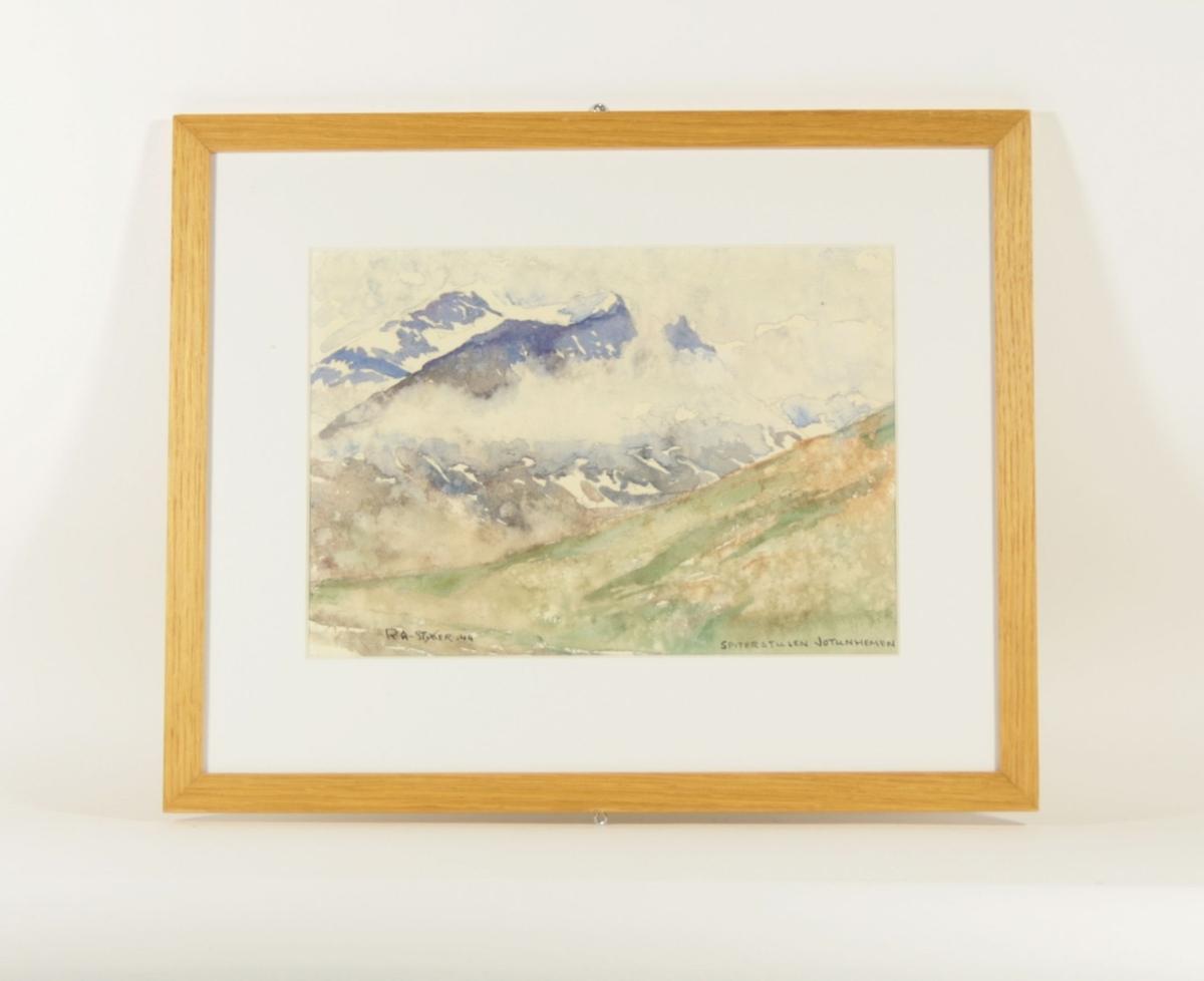 Foran i bildet er en bakke som går nedover fra høyre og mot venstre, i bakgrunnen ser man en snøkledt fjelltopp med tåke rundt.
