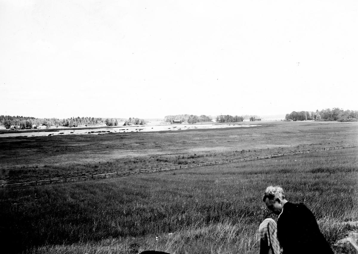 Biotop.  1/7 1933