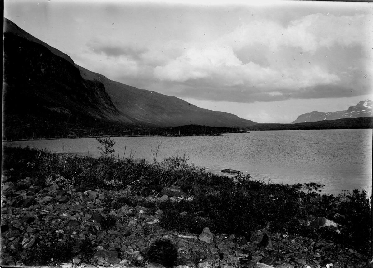 Biotop för bläsand.  Boet i närmaste björkkullen mitt i bilden.  28/6-1912