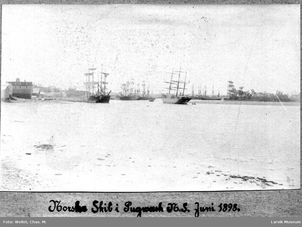 Havnemotiv, flere seilskip til ankers
