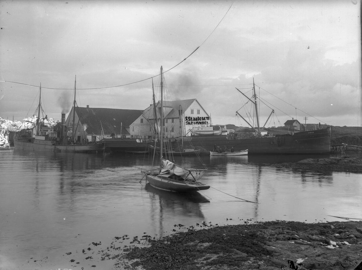 """Vibrandsøy. Seilebåt midt på bilde. Dampskipet D/S """"Sirius"""" midt på bildet. En annet dampskip ankret opp ved siden av, til venstre for """"Sirius""""- Snødekte fjell i bakgrunnen til venstre. Sjøhus og """"S. Staalesen Sild & Makrell""""  bak dampskipene."""