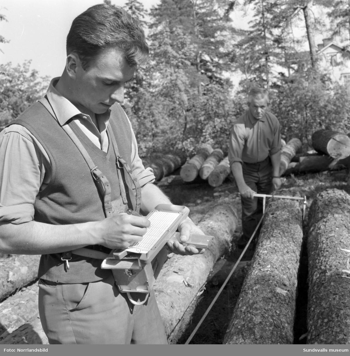 Skogsbrukets datacentral. Bilder för pressvisning.
