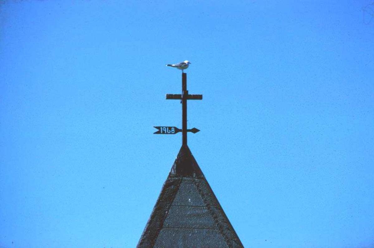 Landskap. En måse hviler ut på et kirkespir. Ett sted i Vesterålen.