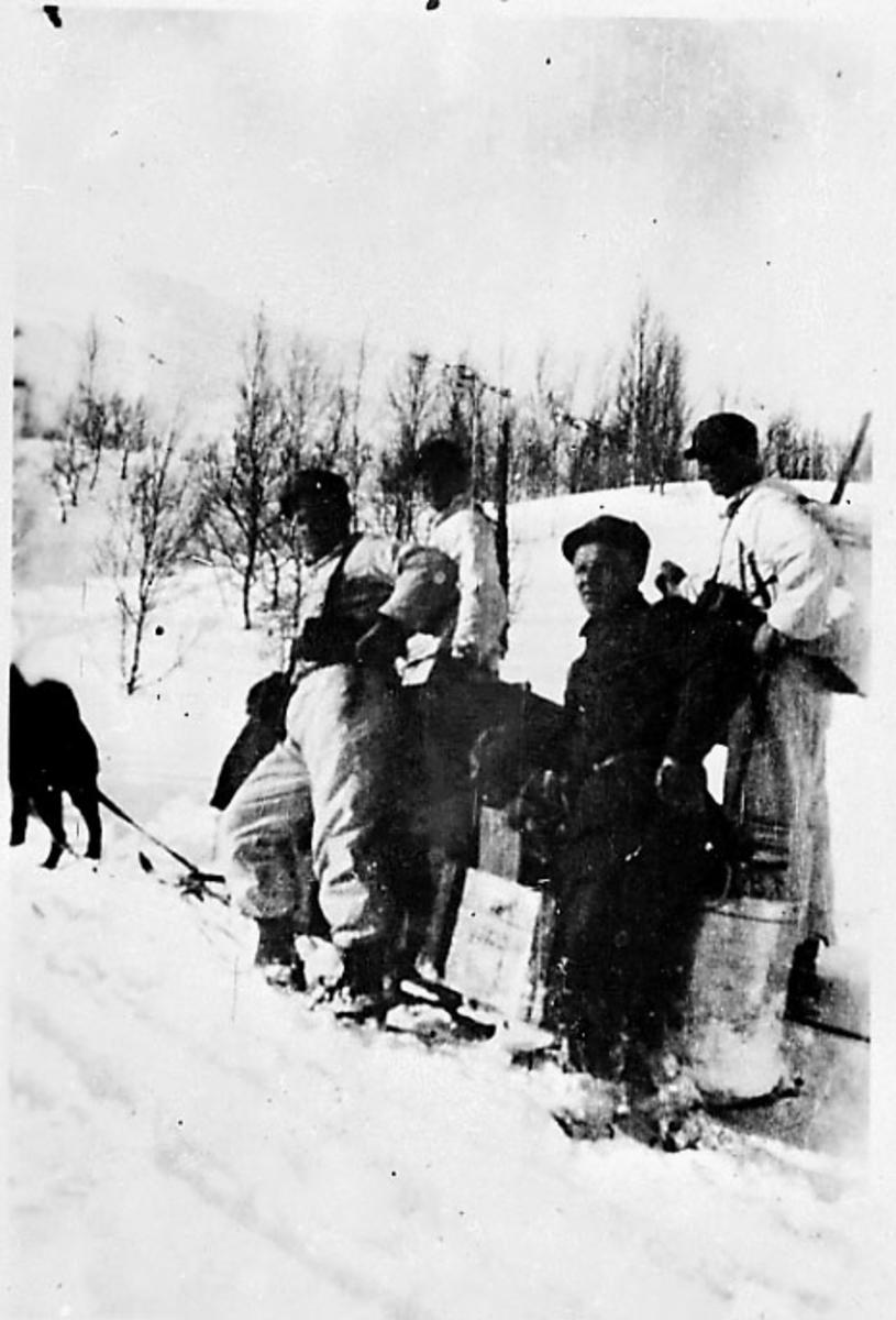 Hundespann, noen personer står ved hundesleden, noe utstyr. Narvik under 2. verdenskrig.