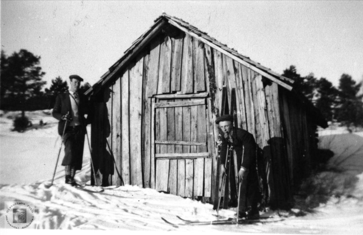 Uteløe på Brelandsheia sør (Myra).