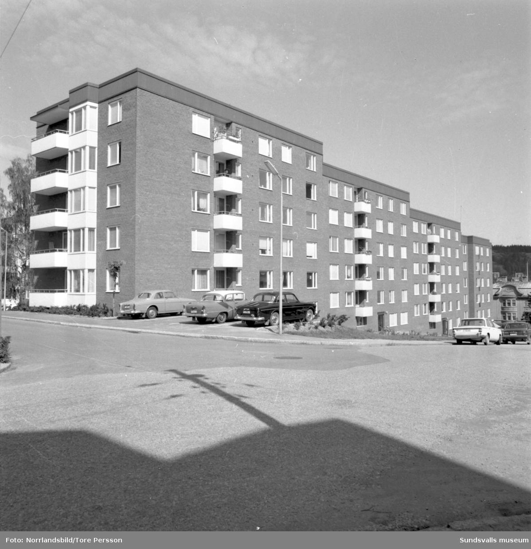 Exteriörbilder av flerfamiljshusen vid Albäcksgatan, fotograferat från Bergsgatan 32. EKO Livs.