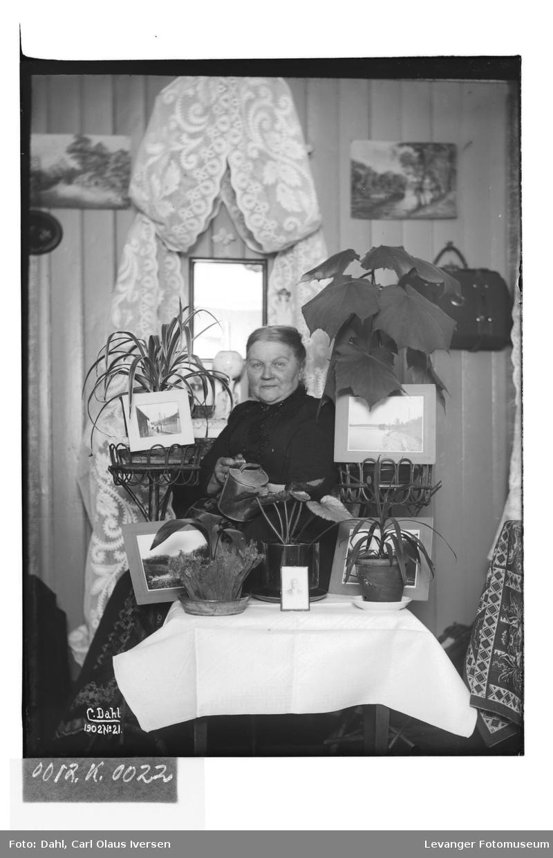 Fru Hutchinson vanner blomster på Carl Dahls værelse