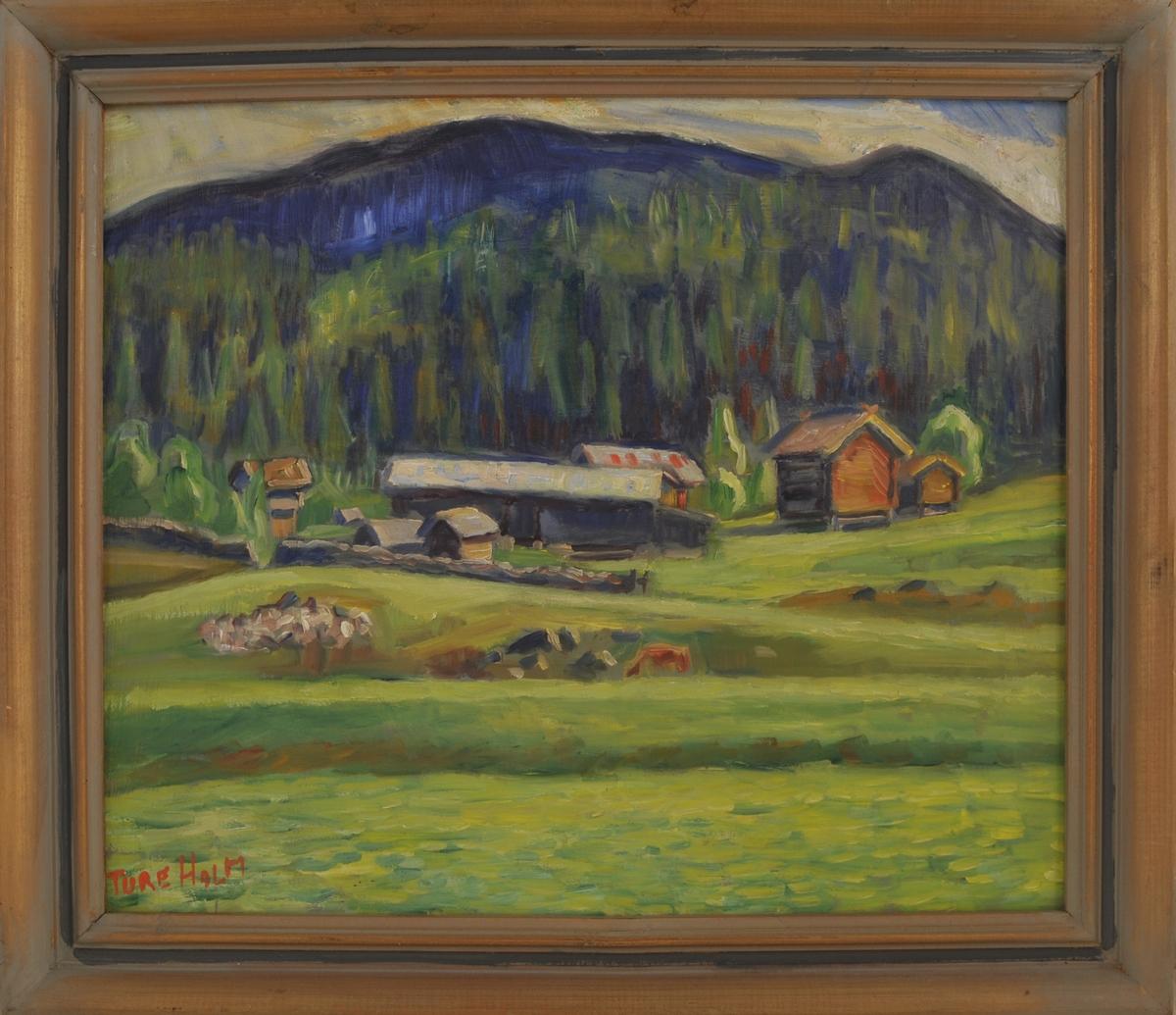 Motivet er frå Øvre Vindlaus (Uppistog), frå tunet frå Nigard Vindlaus. Storebur, veslebur og dei andre husa til venstre.