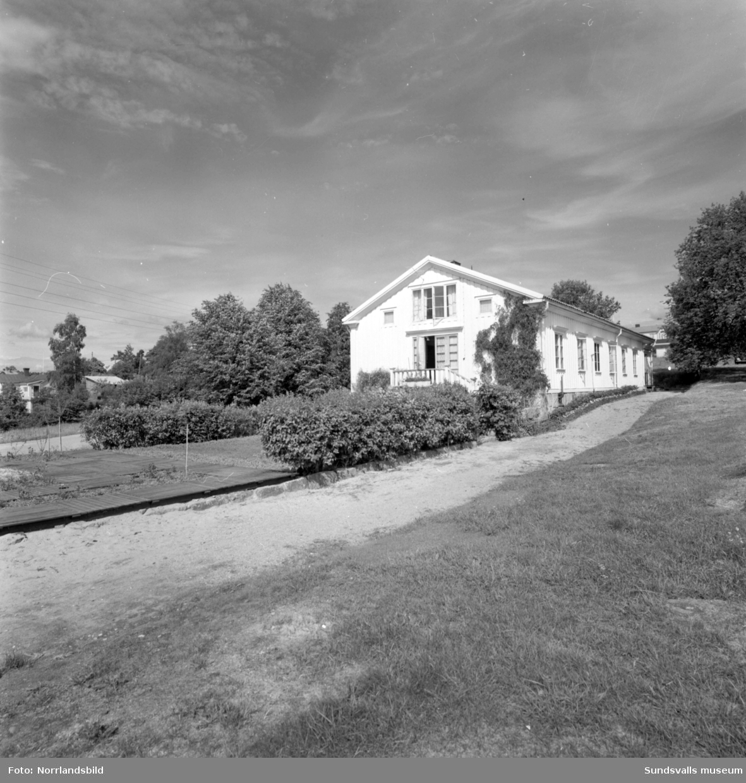 Trädgårdsskolan i Söråker, 1932-1966, disponerade ett stort markområde av det som i dag är centrala Söråker. Huvudbyggnad var den gamla herrgården och skolan odlade köksväxter på 11 hektar mark där det producerades cirka 300 ton per år. Dessutom fanns en stor fruktträdgård, plantskola för fruktträd och prydnadsträd samt flera växthus, till och med ett tropiskt växthus. Allt som producerades såldes för att finansiera verksamheten. Utöver yrkesutbildning för trädgårdsmästare anordnade skolan även kurser för den trädgårdsintresserade allmänheten.