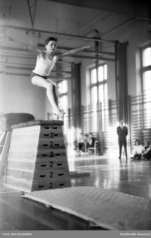 Gymnastiktävlingar i läroverkets, Hedbergskas, gymnastiksal med gymnaster från Sundsvall, Sollefteå och Örnsköldsvik.