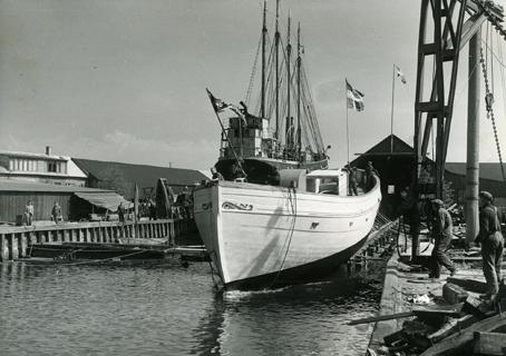 Holms skeppsvarv. Fiskebåten Västland (anm; felhört, hette Westland) för Styrsö Tången, Bohuslän, går av stapeln 1951. Stången med fartygets namnstandart sättes upp när fartyget tar vatten. Skåne, Malmöhus län, Råå.