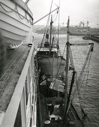 Lastning av m/s Amazonas i Göteborgs hamn. Troligen 1950-tal