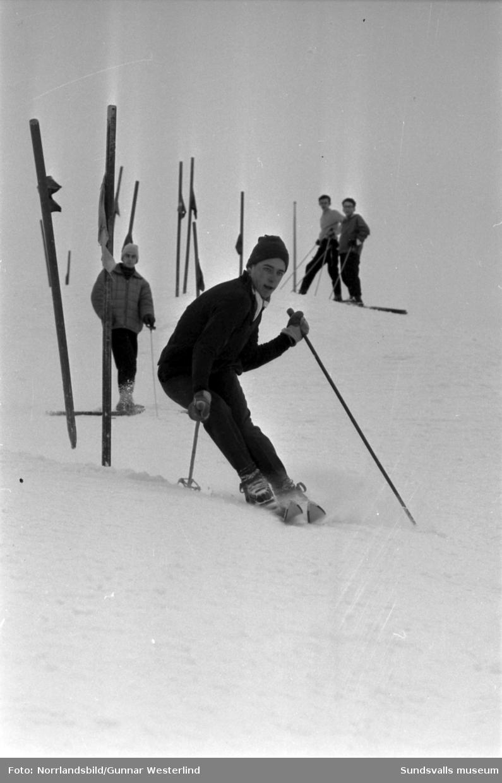Slalomträning i Sundsvallsbacken.