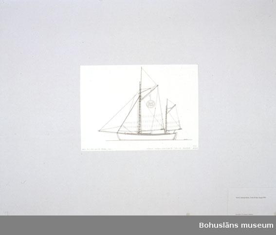 Montering/ram: Passepartout av tunn grå kartong; 55 x 66 cm, Norsk redningssköite, Colin Archer, byggd 1893. Övrig historik se UM72.26.001.