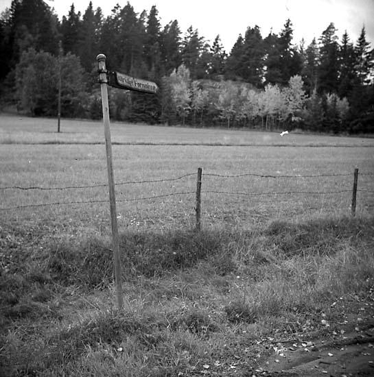 Foss socken. Lökeberg. Vägvisningsskylt till hällristning.