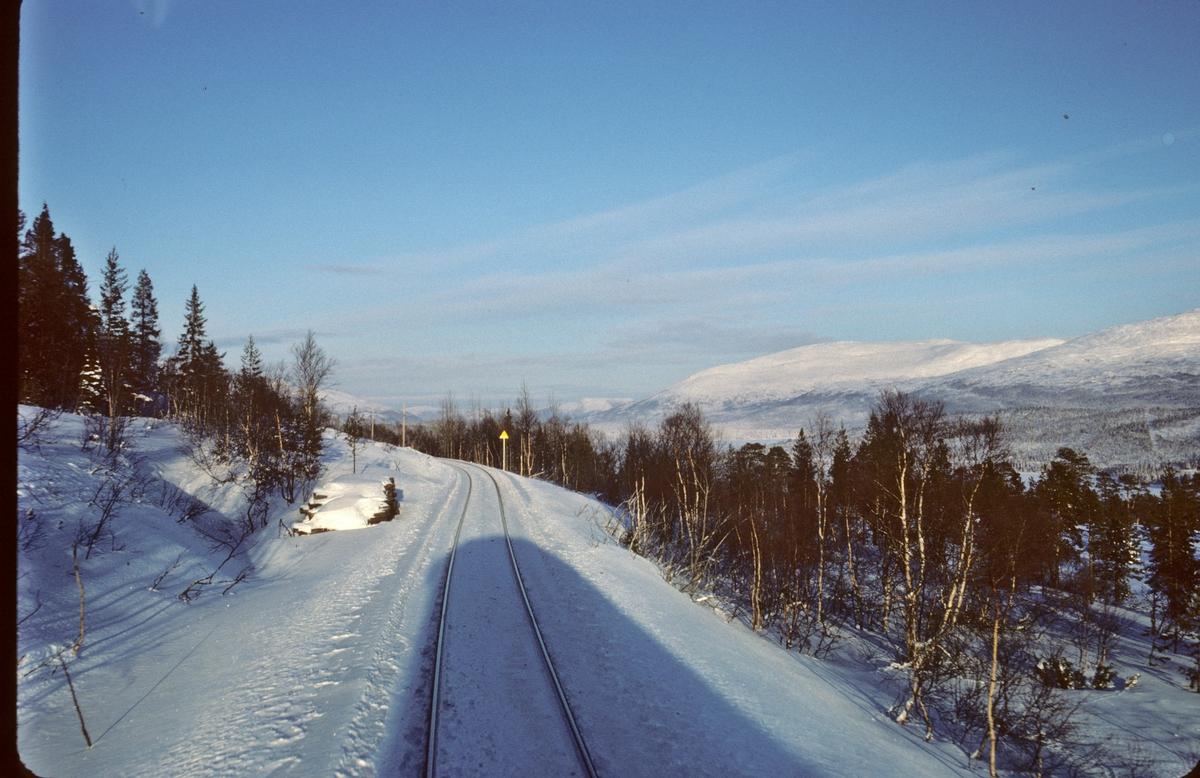 Utsikt fra lokomotivet (Di 4) i NSBs dagtog Trondheim - Bodø, mellom Sefrivatn og Svenningdal.
