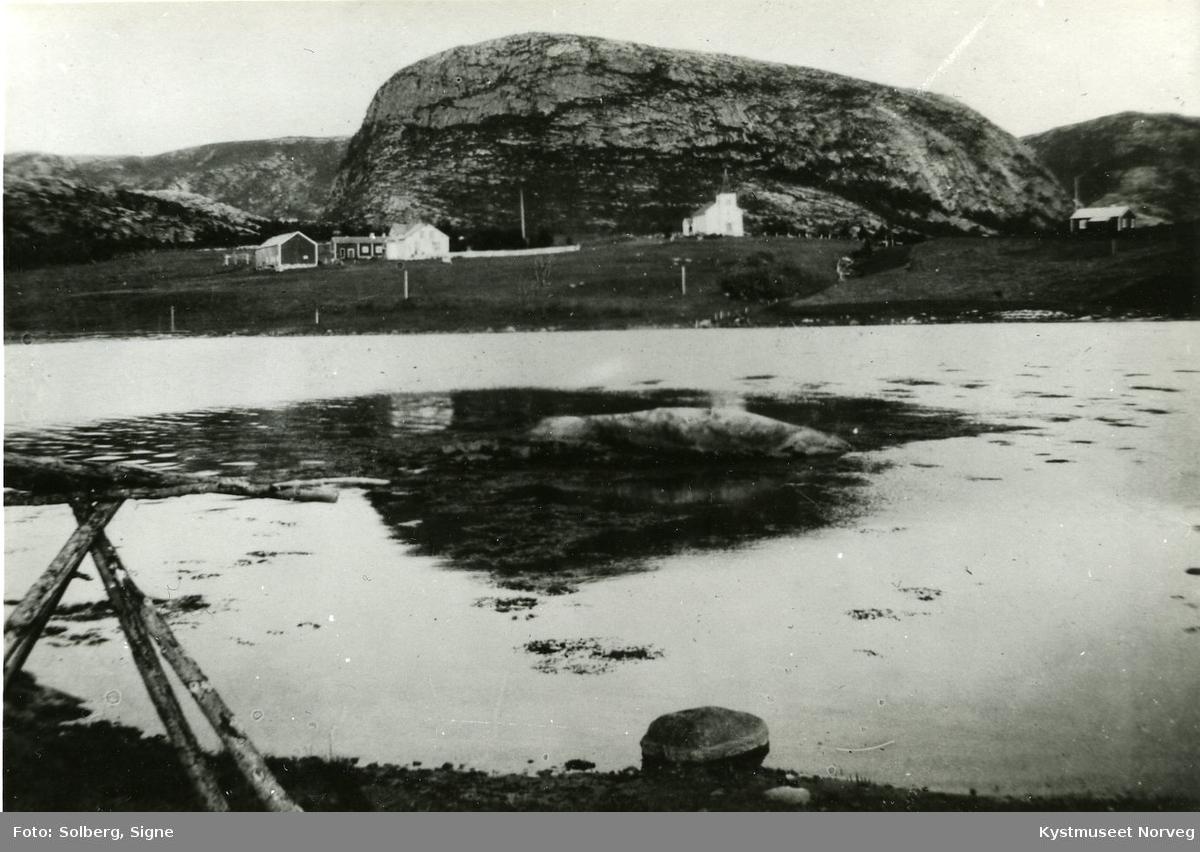 Parti fra Vik i Flatanger
