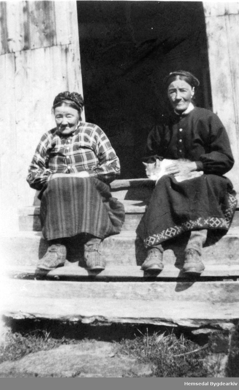 Frå venstre: Margit Torset (1859-1941) og Ingebjørg Torset (1865-1939) på garden Torset,61.4, i Hemsedal
