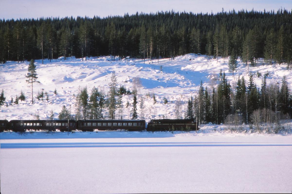 Persontog til Fagernes ved Trevatn.