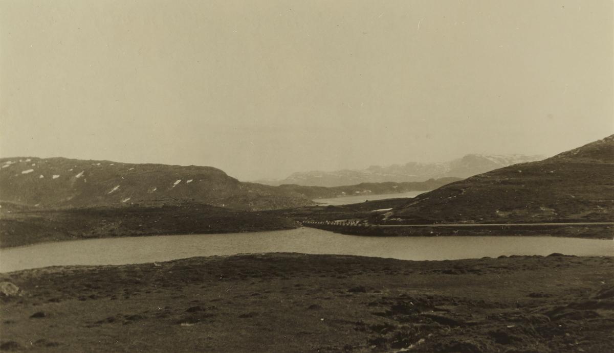 """Utsikt fra """"Skogen"""""""