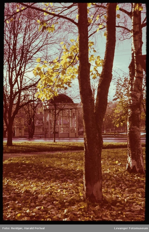 Deler av Øvre Park (nå Sejersteds Park) med Musikkpaviljongen på andre sida av Kirkegata