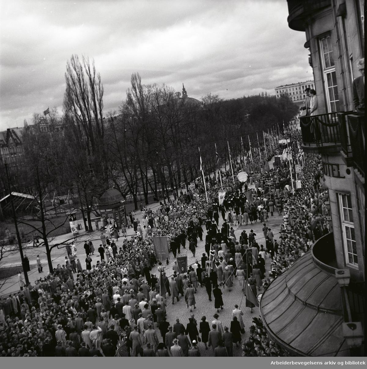 1. mai 1952 i Oslo.Demonstrasjonstoget i Karl Johans gate.
