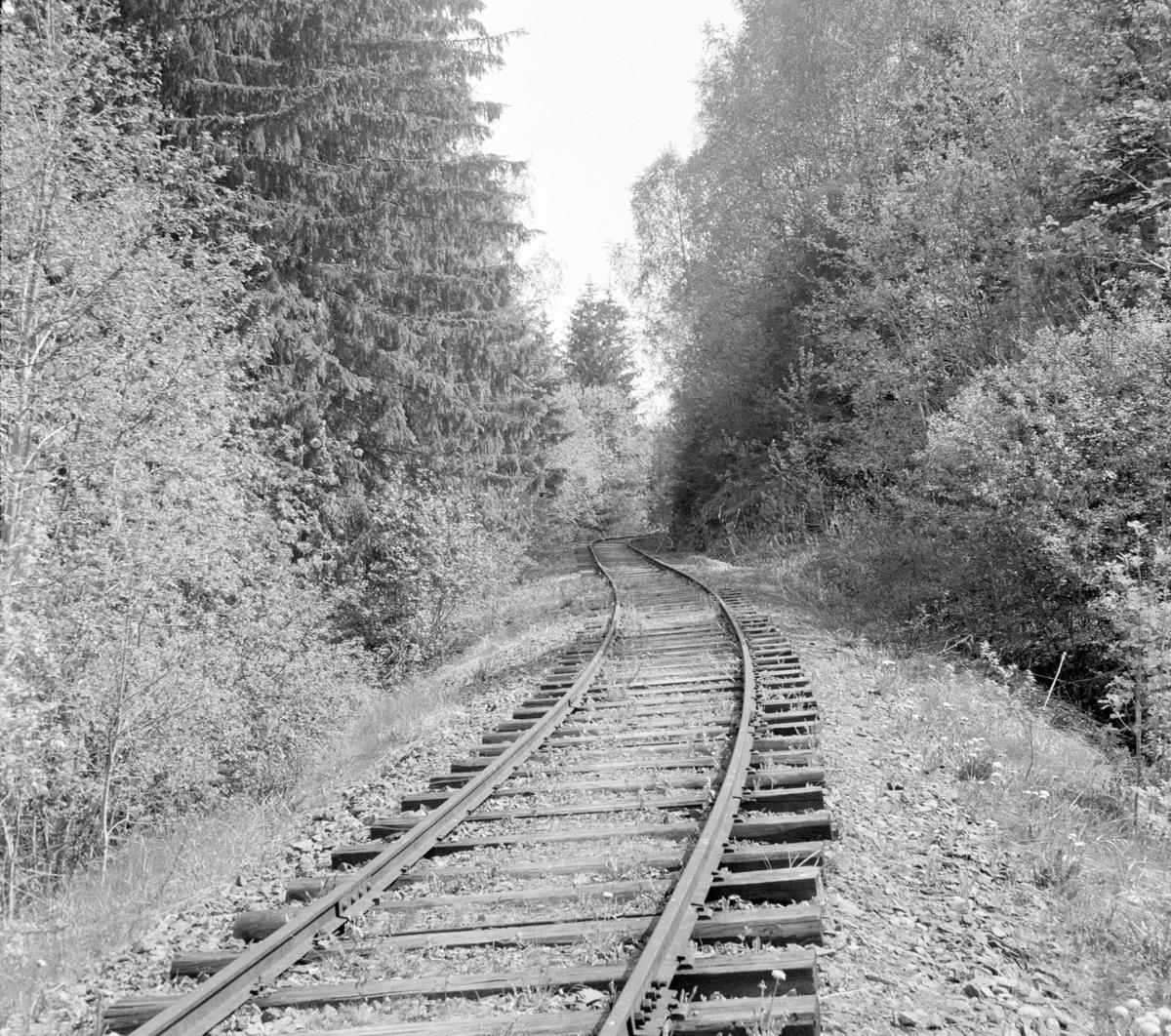Langs traseen på den nedlagte Solbergfossbanen.