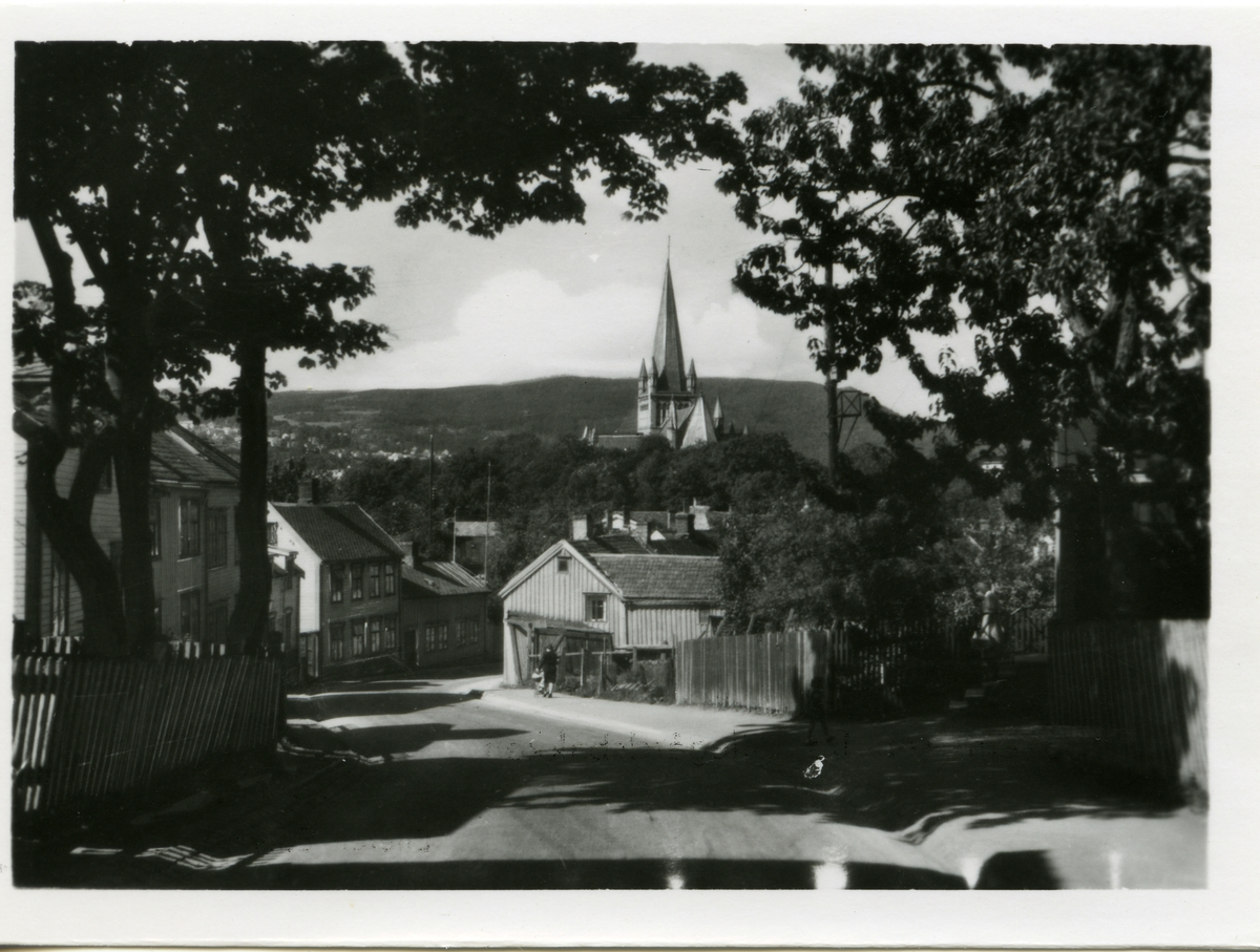 Motiv fra Lillegårdsbakken i Trondheim.