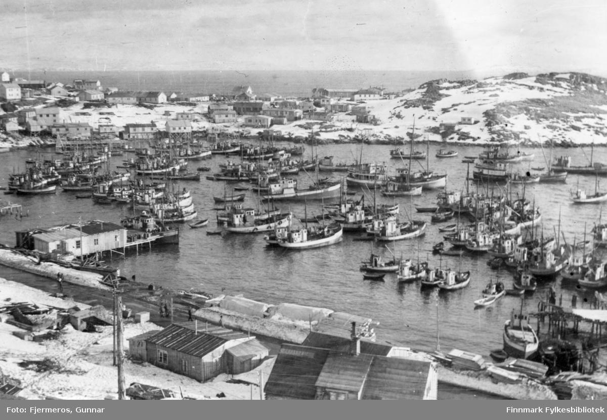 Honningsvåg havn full av båter en vinterdag i 1947.