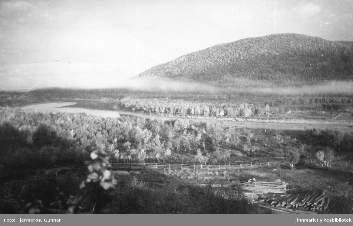Morgensola skinner over en multemyr en sommerdag i 1947. Stedet er ukjent.