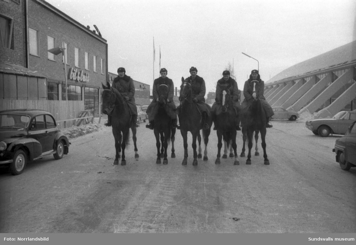 Sundsvalls polishästar och ridande poliser.