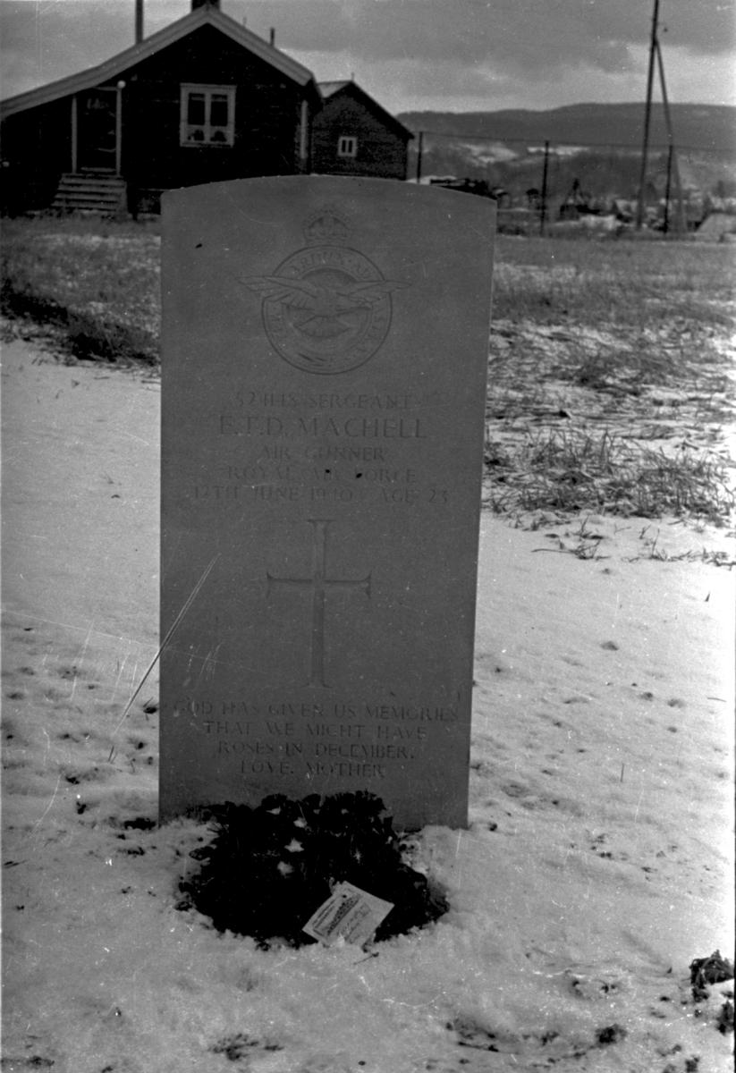 Gravstedet til Sargeant RAF E.T.D. Machell på Stavne kirkegård